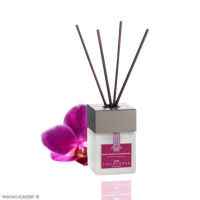 Fragrance Diffuser Dark Vanilla