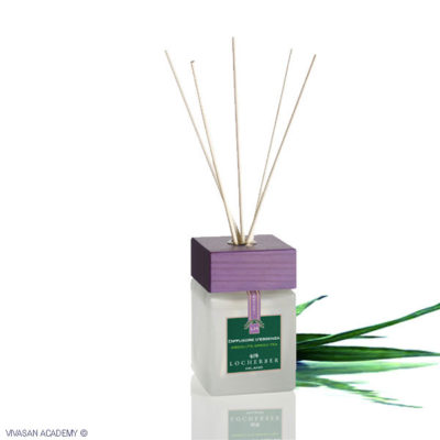 Fragrance Diffuser Absolute Green Tea